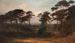 The Firs, Hampstead Heath