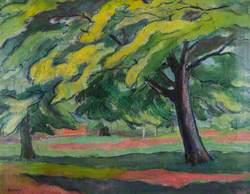 Trees on Hampstead Heath