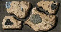 Four Specimens of Tufa from the Quarries near the Grotto of Posillipo