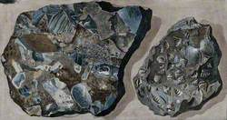 Two Mineral Specimens Found in the Fossa Grande on Mount Vesuvius