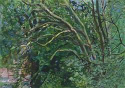 Hampstead Green