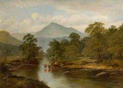 Cattle Watering, Cader