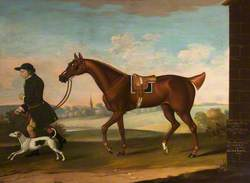 'Squeaking Jenni' Got by Sir Richard Grosvenor's 'Old Terror' with Sir P. B. Leicester's Groom and Hound