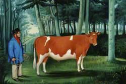 Bullock, Les Eperons