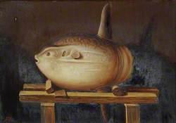 Species of Sun Fish, Caught off Jersey 4 September 1885