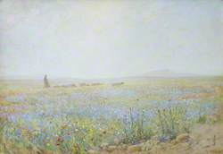 The Flowers of the Fields