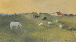 Horse and Sheep Grazing