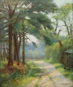 Path from Cuckoo Mills to Swanpool, Falmouth