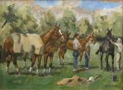 Horses Being Saddled