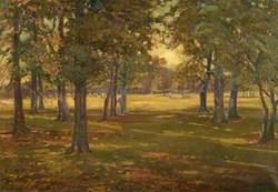 First Touch of Autumn, Rowditch, Derby