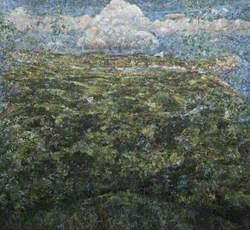 Adolescent Landscape