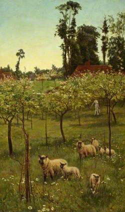 Sheep in an Orchard