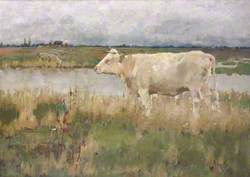 A Lincolnshire Pasture