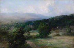 English Landscape in Woods