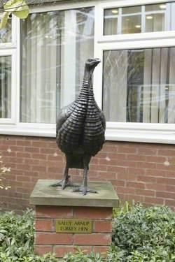Turkey Hen