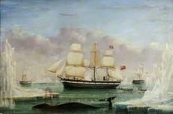 Whaler 'Diana'