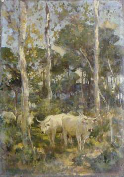 Cattle in a Wood