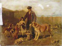 The Dogs Refuge