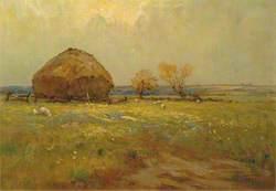 June on the Marsh