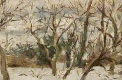 Orchard Snowscape, Felsted