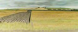 Wiltshire Landscape