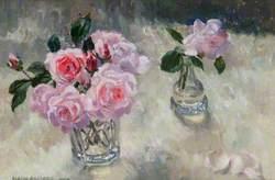 Pink Roses (New Dawn Roses)