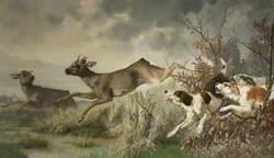A Deer Hunt