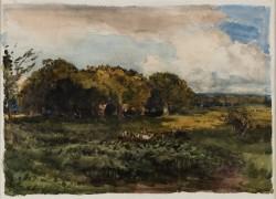 Woodland Landscape: Richmond Park