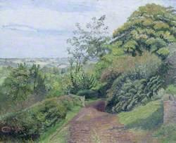 A Muddy Lane, Hewood, Dorset