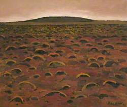 Moorland (Tockholes)