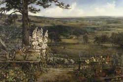 The Minister's Garden