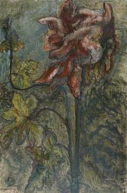 Exhuberant Flower