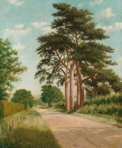 View of Anstey Lane, Alton