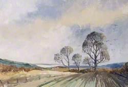 Isle of Wight Landscape