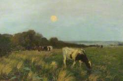 Cattle in Moonlight