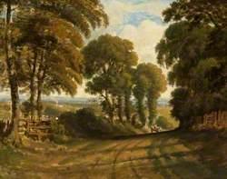 View down Merry Hill Road, Bushey