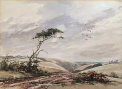 Wind over Exmoor
