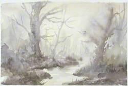 Woodland Misty Morning