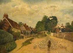 Driving Sheep through Westmill