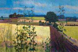 Mid-Hertfordshire Landscape