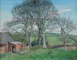 Devon Scene