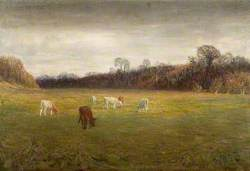 Fields by the River, Warham, Herefordshire