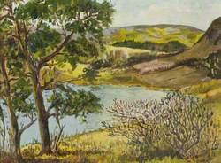 Baldwin Reservoir