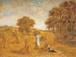 Cornfield, Cotton Lane Farm, Stone, Kent