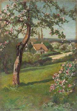 Cottage in Fields