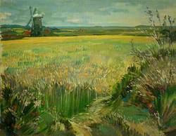 Burnham Overy Mill across the Cornfield, Norfolk
