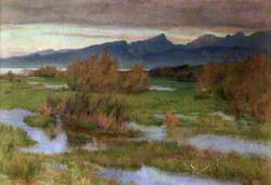 Autumn Rains, the Marshes of Florence, Italy