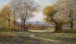 Springtime: Mill Hill Looking towards Harrow