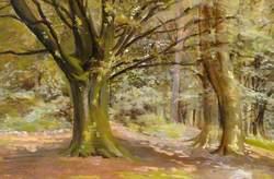 Holwood Park