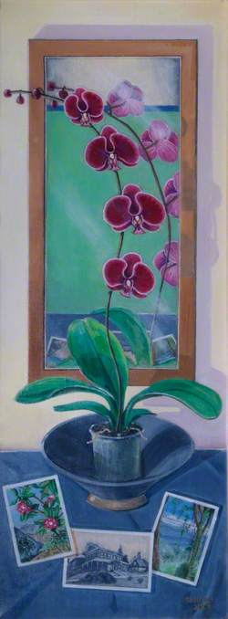 Purple Orchid Reflections